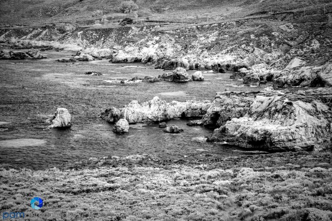 1509_PSA_Pebble_infrared_544-Edit