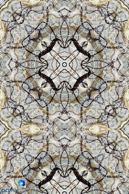 Symmetrical Abstract