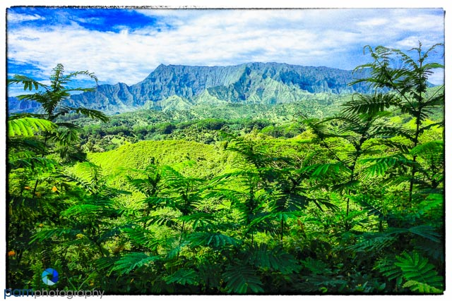 Tropical Paradise on Kauai