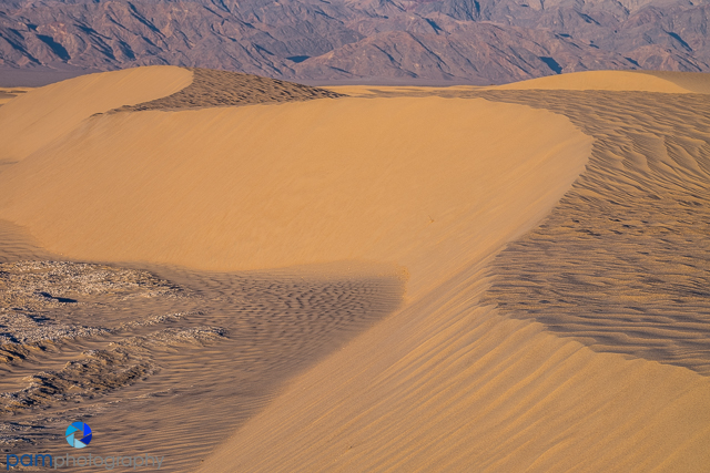 1601_PSA_Death Valley_123