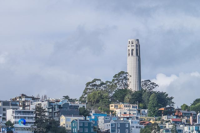 1601_PSA_San Francisco_031