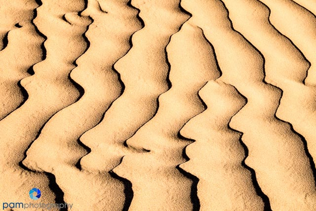 sand dune abstract