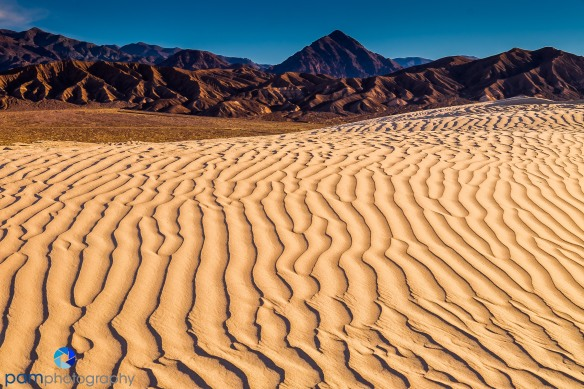 1602_MFA_Death Valley_079