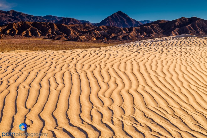 1602_MFA_Death Valley_079