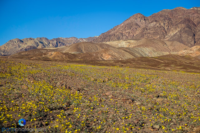 1602_PSA_Death Valley_041