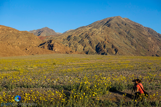 1602_PSA_Death Valley_042