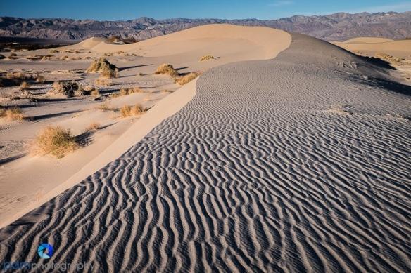 1602_PSA_Death Valley_056