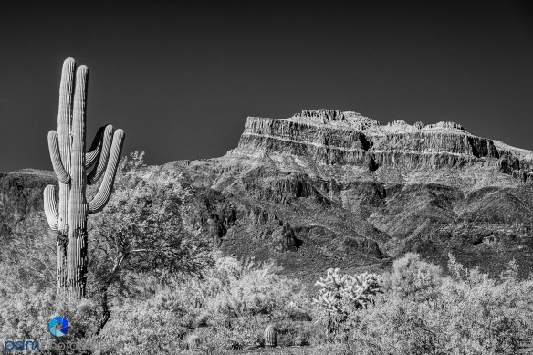 1604_MFA_Arizona_Infrared_015-Edit