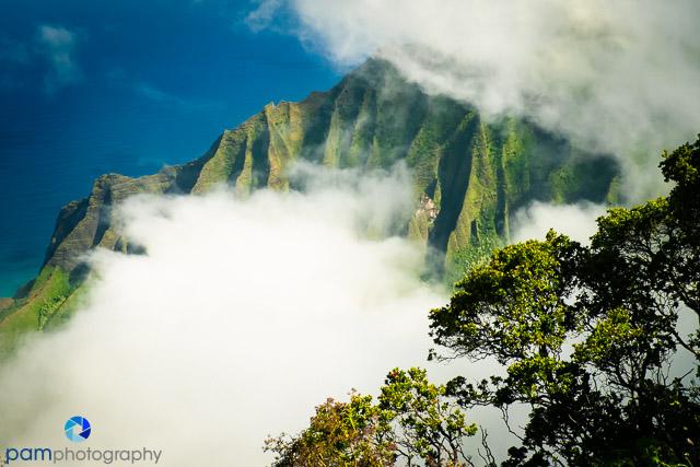 1510_MFA_Kauai_203