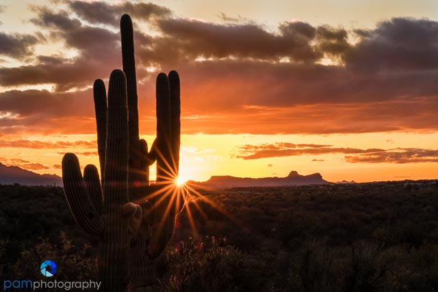 Winter sunset in Tucson