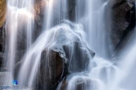 1707_MFA_Sequoia_049-Edit