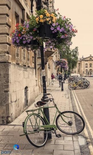 1707_MFA_Oxford_147-Edit