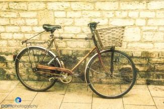 Bike with basket