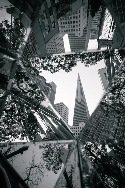 1702_MFA_San Francisco_330