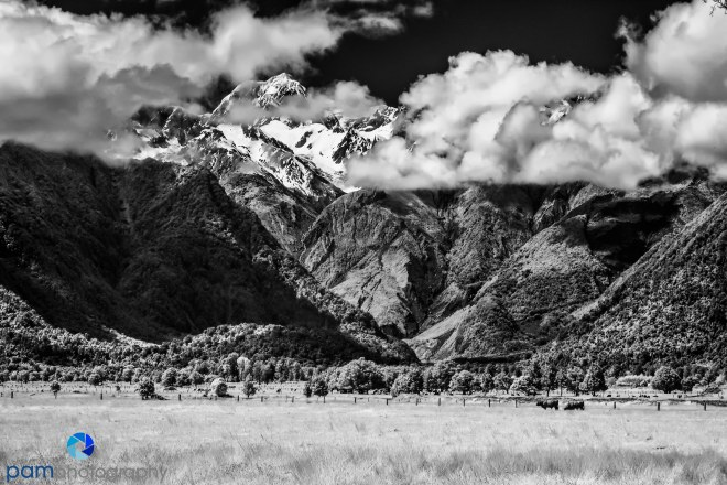 1711_MFA_New Zealand IR_487-Edit