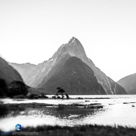 1711_MFA_New Zealand_0020