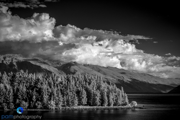 1711_PSA_New Zealand IR_890-Edit