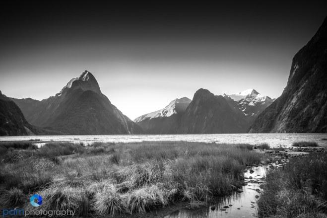 1711_PSA_New Zealand_0032-Edit