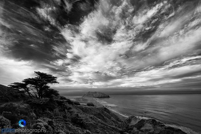 1703_PSA_Big Sur_IR_469-Edit
