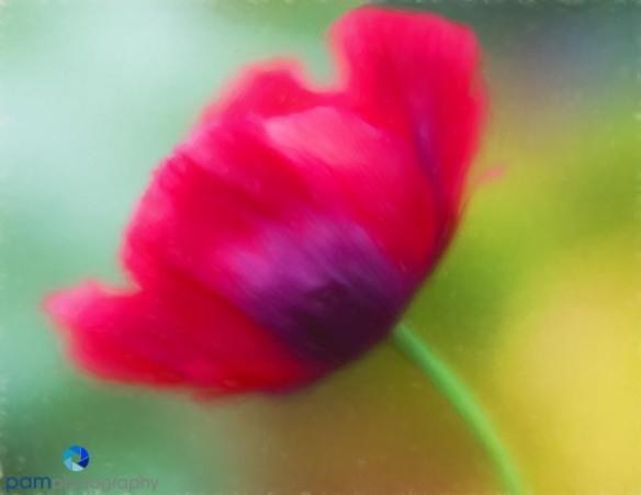 1805_MFA_Descanso_124-Edit