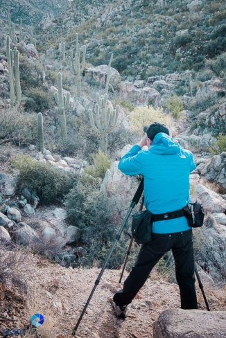 1612_MFA_Tucson_016