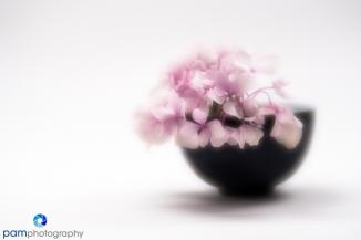 1806_mfa_flowers_016
