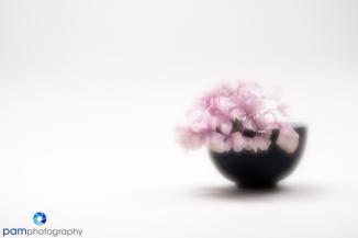 1806_mfa_flowers_019