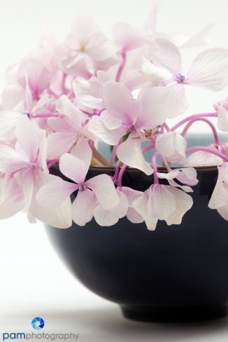 1806_mfa_flowers_044