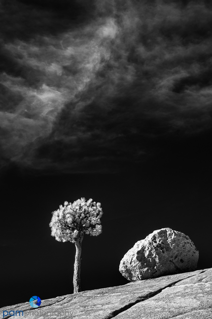 1811_mfa_yosemite ir_540-edit