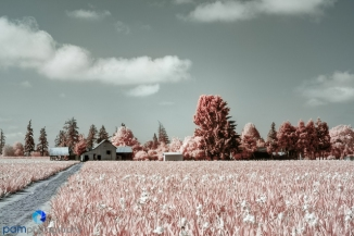 1905_MFA_Oregon_IR_141-Edit