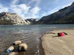 1811_MFA_Yosemite iPhone_017
