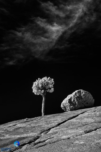 1811_MFA_Yosemite IR_536-Edit