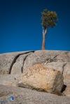 1811_PSA_Yosemite_242