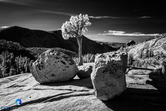 1811_PSA_Yosemite_IR_358-Edit